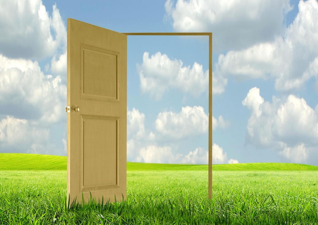 8300396 - opened door